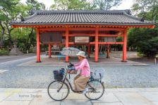 Bikers are all around in Japan, it's only a matter of time (or will) to have them in a nice frame. What better than a traditional kiosk in Sumiyoshi Taisha Park?