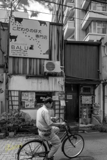 "I deliberately, converted this photo into black and white to give the sense of ""old times"". The bicycle and the stores behind it sure give the impression that this photo is from another century. Although it was shot a few months ago during my amazing trip in Kyoto, Japan."