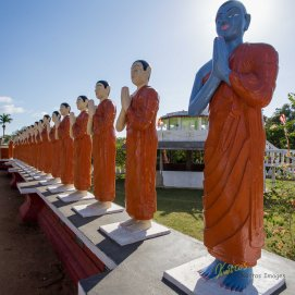 In Sri Lanka Buddhist temples you often see these standing statues of the Buddha's Disciples. Here you clearly spot the Moggallāna (blue colored statue). He was the Second of the Chief Disciples of Buddha, the blue color is due to his dark skin or as the legend has it because he has been through hell.