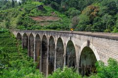 One of my favorite minimalist shots of this trip. Nine Arch Bridge, Ella, Sri Lanka.