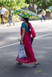 My favorite subject, although I didn't have the chance to take many photos. The flow of the Sarees when a woman is walking is unique. Colombo, Sri Lanka.