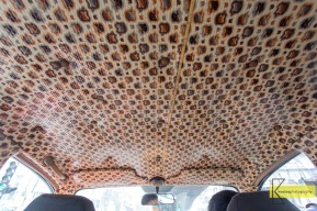Interesting Apple and fake snake skin decoration inside the taxi. Mumbai.