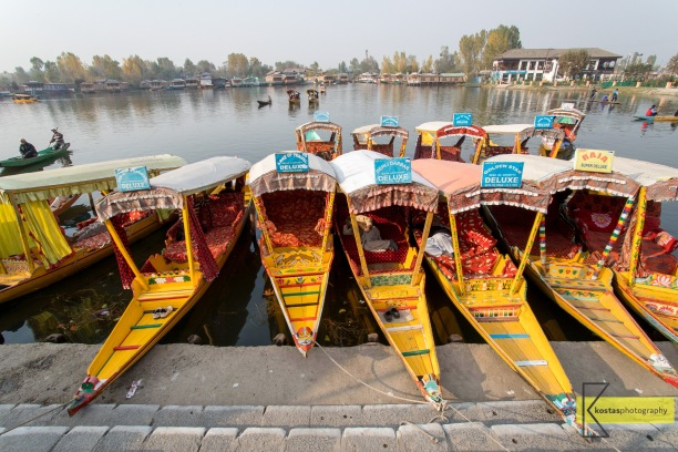 Traditional Shikara boats used for transportation of (mainly) tourists in lake Dal, Kashmir