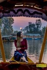 Sunset in Dal Lake, on a Shikara Boat, Kashmir, India.