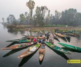 Vegetable Floating Market, Lake Dal, Kashmir