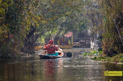 Lady in a boat. View from one of the Canals, Dal Lake, Srinagar, Kashmir.