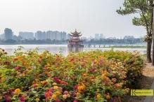 View of Wuliting - 五里亭 Pagoda through a flower garden. Kaohsiung, Taiwan.
