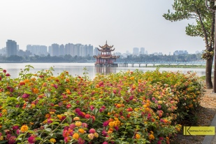 View of Wuliting - 五里亭 Pagoda through a flower garden. Kaohsiung, Taiwan.