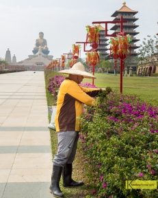 My admiration to the gardeners in Taiwan (as well as during my trip to Japan) is great. They deserve to be mentioned after all their hard work. Great Buddha, Kaohsiung, Taiwan.